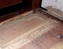 白蟻による床板の被害